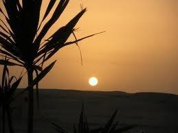 Скажем что погода в египте в июле